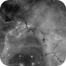 Rosette Nebula close-up (NGC2237) in Hα,                                Jose Carballada
