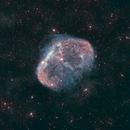Crescent Nebula in Narrowband + RGB,                                Aaron Freimark