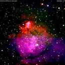 ngc896 nebulosa diffusa in Cassiopea                                                    distanza 7.500 A.L.,                                Carlo Colombo