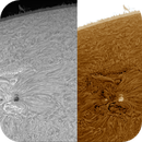 Sun in Halfa 2021.05.09,                                Alessandro Bianconi