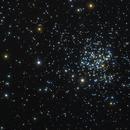 Messier 67 - King Kobra Cluster in Cancer - Tamron 150-600 x2,                                Ray Caro