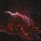 Western Veil Nebula in Bicolor over Bortle 8 skies - Lahore,                                subanday