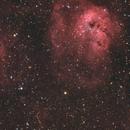 IC 410 - Tadpoles Nebula, IC 417 - The Spider Nebula, & NGC 1931 - The Fly Nebula,                                robo9981