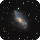 NGC 2146,                                Lorenzo Siciliano