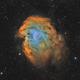 Monkey Head Nebula SHO,                                Alexander Voigt