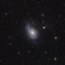 NGC772,                                Sergey Trudolyubov