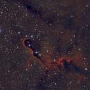 Elephant's Trunk Nebula,                                NocturnalAstro