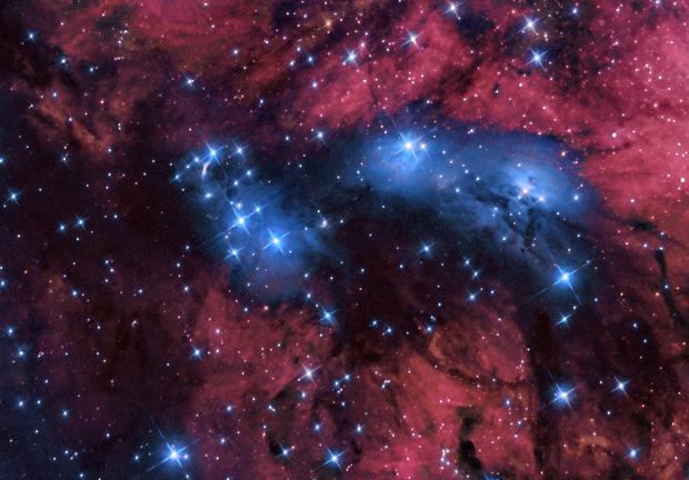 NGC 6914 - Reflection Nebula,                                Tim