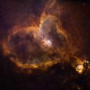 Heart Nebula on fire,                                Wei Li