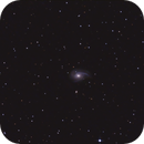 ARP 78 /NGC 772,                                H.Chris