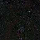 Orionid meteor,                                JoeRez