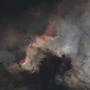 NGC 7000 starless,                                tycho56