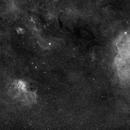Lion- and Elephant Trunk Nebula (SH2-132 and IC 1396),                                Wolfgang Zimmermann