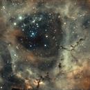 Rosette Nebula,                                Christian63