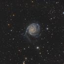 M101,                                Michele Bocchini