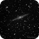 NGC 891,                                Steve Colwill