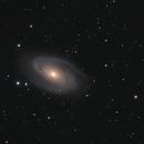 Messier 81 (Bode's Galaxy), Messier 82 (Cigar Galaxy),                                Andy Rattler Brown