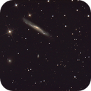 NGC 3079 & Twin Quasar,                                Bob Gillette