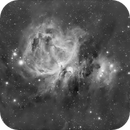 Messier 42/43  en H-Alpha & Luminance New Version,                                Georges