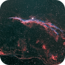 ngc6960 (the Witch Broom, aka the Veil),                                Jean-Marie Locci
