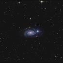NGC 3338,                                sky-watcher (johny)