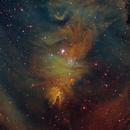 """NGC2264,                                Makoto""""G-H""""Shindou"""