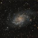 M33 The Triangulum galaxy,                                Lensman57