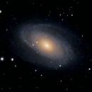 M81 Bode's Galaxy Motion Simulation  (Unguided),                                Robert Van Vugt