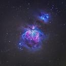 Orion Nebula,                                FocalWorld