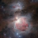 The Great Orion Nebula,                                Giuseppe Donatiello