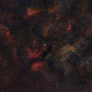 The Heart of Cygnus [widefield, draft mosaic],                                Daniel Erickson