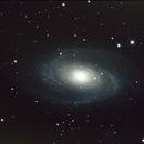 Messier 81,                                Virginie