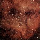 IC 1396,                                Prea