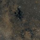 Black Spider Nebula (LDN 673),                                Dave Dev