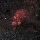 NGC 6334 - Cat's Paw Nebula,                                Astro-Wene