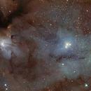 "IC4603 ""Heart of the Scorpion"",                                Dean Schwartzenberg"