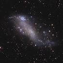 Coddington's Nebula - IC 2574,                                Jim Thommes