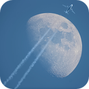 Fly me to the Moon,                                Damien Cannane