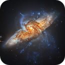 Colliding Galaxies - NGC 3314 , Hubble Space Telescope,                                Rudy Pohl