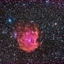 NGC 2174 (Monkey's Head Nebula),                                David McClain