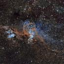 Statue of Liberty Nebula (Hubble Palette version),                                Diego Cartes