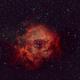 Rosette NGC 2244,                                christianhanke