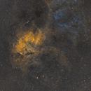 Sh2-132 The Lion Nebula in SHO,                                JohnAdastra