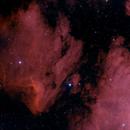 Pelican Nebula,                                Mark