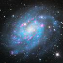 NGC 300, Spiral Galaxy in Sculptor,                                José Joaquín Pérez