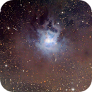 Iris Nebula,                                Peter Williamson