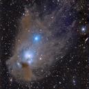 NGC 5367 Reflection Nebula in Centaurus,                                Niall MacNeill