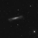 WIP - NGC3628,                                Tiflo
