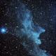 The Witches Head nebula - IC2118,                                Bruce Graham