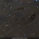 Dark Nebulae of Taurus Molecular Cloud,                                Gabriel R. Santos (grsotnas)